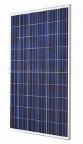 Trina Solar Honey 270Wp (TSM-PD05) napelem