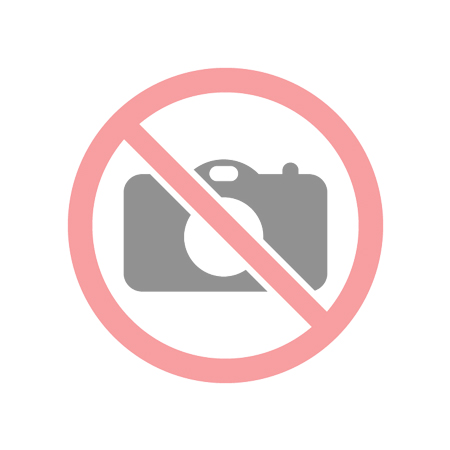 Techson IP E2-Pro 74048 IP kompakt kamera