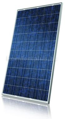 Canadian-Solar-CS6P-P